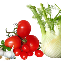 Fresh Tomatoes Bunch PNG Transparent Image