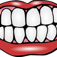 Smiling Tooth PNG Photos