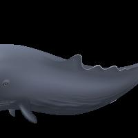Blue Whale PNG Clipart